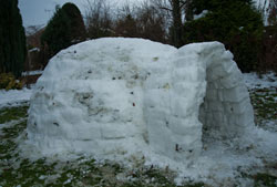 Build your own snow igloo complete
